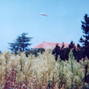 Disc-Shaped UFO in Pacific Palisades