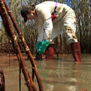 Greenpeace Worker Collects Oil Samples